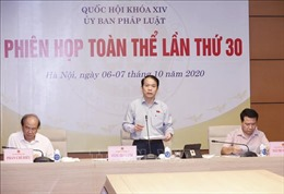 Phiên họp toàn thể lần thứ 30 Ủy ban Pháp luật của Quốc hội