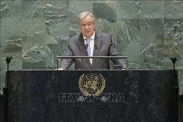Liên hợp quốc kêu gọi chung tay giải quyết cuộc khủng hoàng Libya