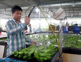 Thứ trưởng Phùng Đức Tiến: Ngành nông nghiệp sẽ đạt mục tiêu xuất khẩu trên 40 tỷ USD