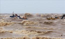 Thủ tướng Chính phủ khen ngợi các lực lượng cứu hộ thuyền viên