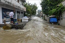 Ấn Độ sơ tán hàng nghìn người để tránh bão Nivar