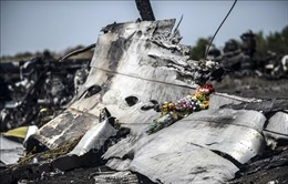 Vụ rơi máy bay MH17: Nga cho rằng việc tiếp tục tham vấn với Australia, Hà Lan là 'vô nghĩa'