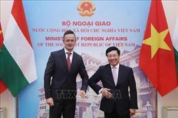 Phó Thủ tướng, Bộ trưởng Ngoại giao Phạm Bình Minh hội đàm vớiBộ trưởng Ngoại giao và Kinh tế đối ngoại Hungary