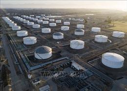 Giá dầu thế giới giảm trong phiên 19/10