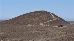 Phát hiện hình khắc con mèo khổng lồ tại Di sản Thế giới Nazca