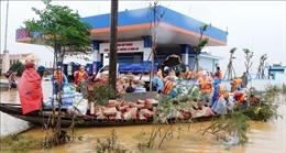 Nước rút nhanh, người dân Quảng Bình khẩn trương khắc phục hậu quả mưa lũ