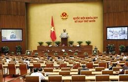 Tham gia lực lượng gìn giữ hòa bình của LHQ góp phần nâng cao vị thế của Việt Nam