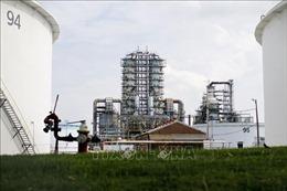 Giá dầu thế giới giảm hơn 3% phiên 26/10 do lo ngại dư nguồn cung