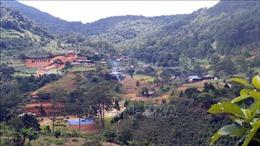 Lâm Đồng: 'Hỏa tốc' kiểm tra vụ xây dựng 'Làng biệt thự' trái phép trên đất rừng