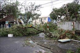Quảng Nam: Bão số 9 làm 7 người thương vong, 43 nhà bị tốc mái, sạt lở bồi lấp
