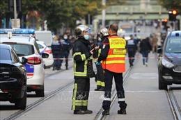 Cơ quan chống khủng bố của Pháp tiến hành điều tra vụ đâm dao tại Nice