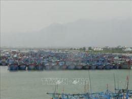 Khánh Hòa tập trung ứng phó bão số 10