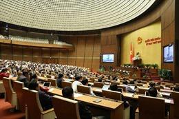 Bên lề Kỳ họp thứ 10, Quốc hội khóa XIV: Quan tâm đến nông nghiệp, nông dân, nông thôn