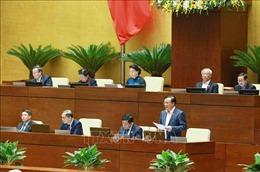 Phó Thủ tướng Vũ Đức Đam và 7 Bộ trưởng giải trình, làm rõ các vấn đề đại biểu quan tâm