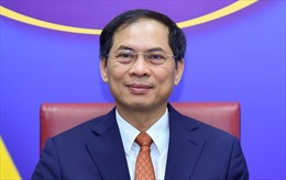 Tham khảo Chính trị lần thứ VII cấp Thứ trưởng Ngoại giao Việt Nam - Brasil
