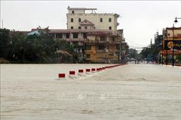 Thừa Thiên - Huế cho học sinh nghỉ học từ chiều 11/11 để ứng phó với mưa lũ