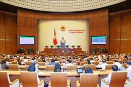 Thông cáo báo chí số 15, Kỳ họp thứ 10, Quốc hội khóa XIV