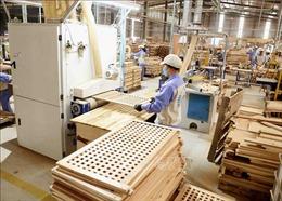 Doanh nghiệp gỗ lấy lại đà tăng trưởng