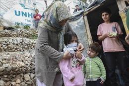 IOM kêu gọi tiếp cận bình đẳng vaccine phòng COVID-19 cho người tị nạn, di cư