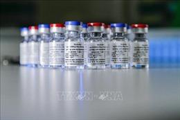 Hungary nhận mẫu vaccine Sputnik V ngừa COVID-19 đầu tiên của Nga