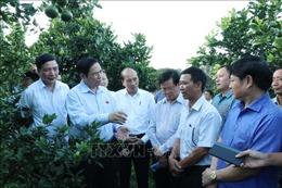 Đồng chí Phạm Minh Chính thăm và làm việc tại Đắk Lắk