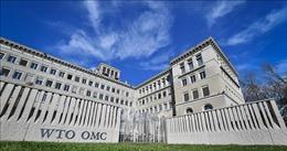 WTO trước nhu cầu cải tổ để phù hợp với tình hình mới