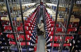Moody's hạ dự báo tăng trưởng kinh tế Ấn Độ
