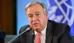 LHQ: Chỉ có giải pháp 'hai nhà nước' mới tạo hòa bình bền vững cho Israel-Palestine