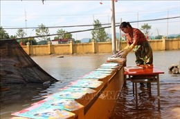 UNFPA hỗ trợ thêm 800.000 USD chophụ nữ,trẻ em gái bị ảnh hưởng bởi lũ lụt