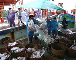 Sản lượng thủy sản Kiên Giang vượt hơn 10% kế hoạch