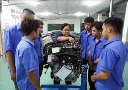 Đào tạo cao đẳng cho học sinh tốt nghiệp THCS: Cần xây dựng chương trình phù hợp