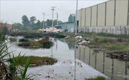 Tăng cường kiểm tra, xử lý tình trạng ô nhiễm kênh, rạch
