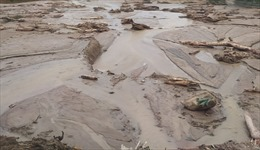 Kon Tum: Đề nghị chủ đầu tư Thủy điện Đăk Re trả lại hiện trạng đất ban đầu
