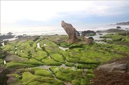 Khám phá vẻ đẹp thiên nhiên hoang sơ ở Bình Thuận