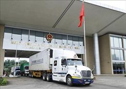 Trên 500 tấn hàng hóa qua Cửa khẩu Quốc tế Kim Thành đầu năm mới