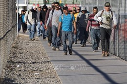 Tổng thống Mỹ Donald Trump gia hạn 2 lệnh cấm nhập cư
