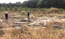 Khu xử lý chất thải của Công ty TNHH Cù Lao Xanh công khai gây ô nhiễm môi trường