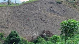Bất cập trong quản lý bảo vệ rừng, đất rừng ở Phú Yên