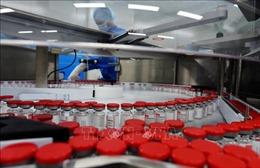 Nga, Đức thảo luận khả năng hợp tác sản xuất vaccine ngừa COVID-19