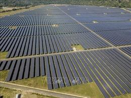Hoàn thành nhà máy điện mặt trời đóng góp gần 400 triệu kWh cho lưới điện quốc gia