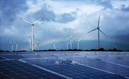 Tăng trưởng kinh tế nhanh thúc đẩy tiêu thụ năng lượng xanh tại Việt Nam