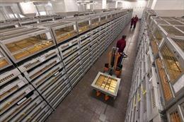 Dự trữ vàng của Nga lần đầu tiên vượt qua dự trữ USD