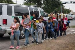 Vấn đề người di cư: Tân Tổng thống Mỹ thúc đẩy cải cách lớn