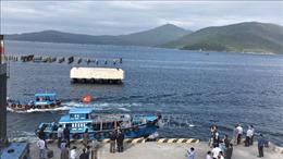 Khai thác sử dụng hiệu quả tài nguyên, phát triển bền vững kinh tế biển Việt Nam