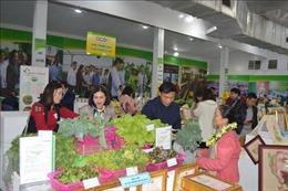 Thêm 22 sản phẩm được công nhận OCOP Vĩnh Phúc