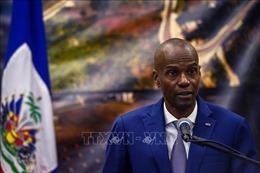 Việt Nam và HĐBA: HĐBA lên án các hành vi bạo lực nhằm vào dân thường tại Haiti