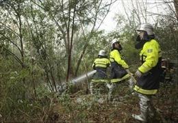 Liên tiếp 2 vụ cháy rừng xảy ra tại Nhật Bản