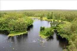 Vườn Quốc gia U Minh Thượng xây dựng bản đồ số phòng chống cháy rừng