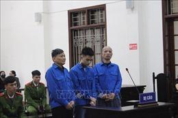 Tăng mức án đối với kẻ chủ mưu thuê tạt acid và chém người ở Hòa Bình