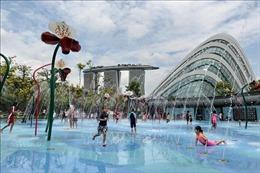 Tỷ lệ sinh của Singapore thấp nhất trong một thập kỷ